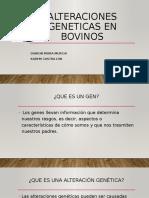 Alteraciones Geneticas en Bovinos