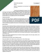 2_2018_04_07!11_17_30_PM.pdf