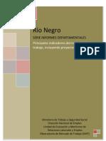 RIO_NEGRO  informe desocupación.pdf