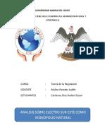 ANALISIS DE ELECTRO SUR ESTE (1)