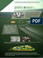 Infografia Aplicar conocimientos inherentes al proceso de revolucion verde