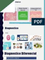 dermatitis contacto.pptx