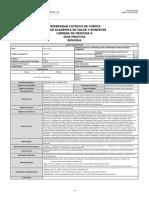 GuiaPractica 4 (Pg 2).pdf