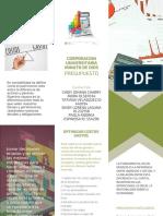 folleto presupuesto activdad 2