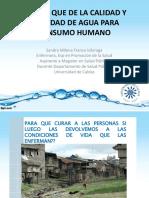 EL PARA QUE DE LA CALIDAD Y CANTIDAD.pdf