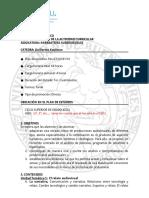 DIS_Narrativas Audiovisuales (Kaufman)_Programa 2020-w