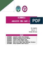 Sinergia Analisis Caso j.A