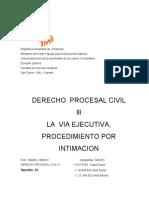 LA VIA EJECUTIVA Y EL PROCEDIMIENTO DE INTIMACION