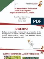 ARTICULO BROCOLI.pdf