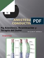 Anestesia conductiva para presentar
