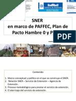 sner-paffec-pndri_general - copia.pptx