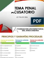 DIAPOSITIVAS CONFERENCIA SISTEMA PENAL ACUSATORIO SEMANAS 5 Y 6