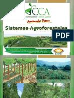 Presentación sistemas agroforestales