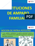 INSTITUCIONES DE AMPARO FAMILIAR.pptx