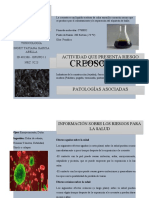 ACTIVIDAD 2 - PLEGABLE TOXICOLOGIA.docx