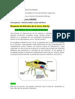 Lozano García artículos 1 y 2.docx
