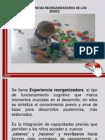 Experiencia reorganizadora. pdf
