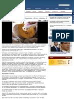 la auyama_ una hortaliza rica en potasio_ calcio y vitamina a _ avn