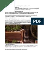umiditatea plantelor