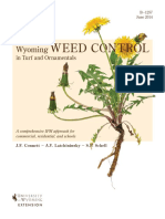 Wyoming Weed Control in Turf and Ornamentals