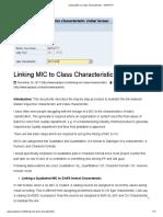 Linking MIC to Class Characteristic - SAPSPOT