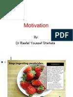 Ch 5 Motivation  Raafat