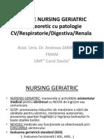 LP 6 semestrul II  PLAN DE NURSING GERIATRIC CV