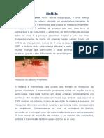 Desenv. - Biologia - Malária