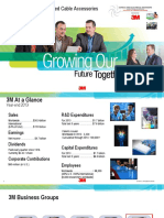 3M High Voltage_and_Grid Automation Growing_our_Future - CEE February 2015 Presentation