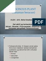 Poisioning Plant
