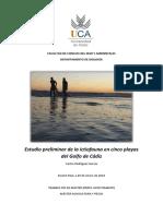 Estudio preliminar de la ictiofauna en cinco playas del Golfo de Cádiz