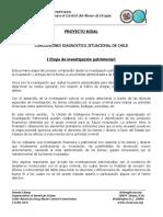 Conclusiones diagnostico situacional Chile