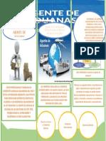 evidwncia 3.6 folleto perfil del agente aduanero