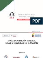 PRESENTACIÓN GATISST VIGILANCIA.pdf