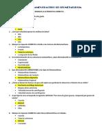 TERCER EXAMEN PRACTICO DE GEOMETALURGIA