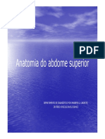 ANATOMIA DO ABDOME SUPERIOR.pdf