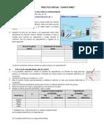 practica virtual.pdf