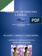 PROGRAMA DE GIMNASIA LABORAL