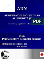 ADN-structura Primara Si Secundara. Transcriptia C 4