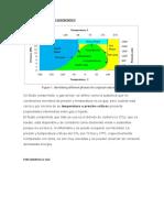PRINCIPIOS DE UN FLUIDO SUPERCRITICO.docx