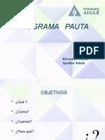 Programa Pauta-Versión final 2