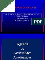 psicopatologaiia-oct-160519013552
