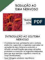 INTRODUÇÃO ao SISTEMA NERVOSO -  Fisiologia