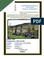 182502598-Pip-Palto-Tintay-Enero.docx