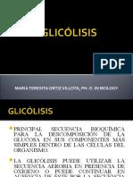 GLUCÓLISIS.ppt