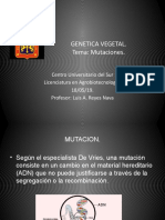 Tipos de Mutaciones-genetica 2019a4