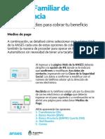 Medio de pago IFE Red Banelco.pdf