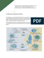 epidemiologia aporte (1)