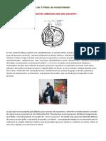 Las 5 Pieles de Hundertwasser