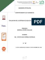 EVALUACIO DE LA ENTRADA DE AGUA EN YAC.pdf